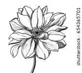 tropical hawaiian dahlia flower ... | Shutterstock . vector #654365701