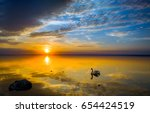 sunset swan silhouette on lake... | Shutterstock . vector #654424519