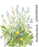bouquet of forget me nots with... | Shutterstock . vector #654439444