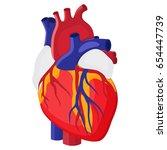 human heart. internal organ.... | Shutterstock .eps vector #654447739