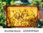 frames of a bee hive. beekeeper ... | Shutterstock . vector #654449464