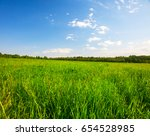 green field with flowers under... | Shutterstock . vector #654528985