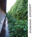 green walls  vertical gardening ... | Shutterstock . vector #654534997