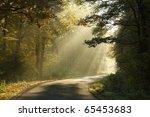 lane leading through the misty...   Shutterstock . vector #65453683