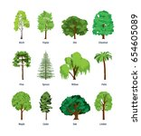collection of different kinds... | Shutterstock .eps vector #654605089