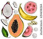 vector hand drawn set of exotic ... | Shutterstock .eps vector #654658264