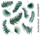 vector tropical palm leaves ... | Shutterstock .eps vector #654668899