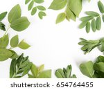 green leaves as a frame on... | Shutterstock . vector #654764455