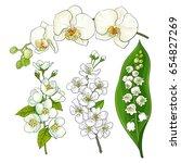 white flower set   lily of the...   Shutterstock .eps vector #654827269