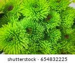 beautiful green chrysanthemum... | Shutterstock . vector #654832225