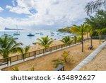 mauritius   bain boeuf tropical ... | Shutterstock . vector #654892627