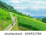 family cyclists on grape... | Shutterstock . vector #654921784
