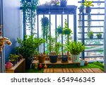 natural plants in the hanging... | Shutterstock . vector #654946345