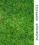 lawn garden | Shutterstock . vector #654951511