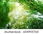 trees reflecting on the surface ... | Shutterstock . vector #654955765