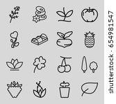 leaf icons set. set of 16 leaf... | Shutterstock .eps vector #654981547