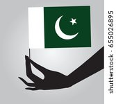 flag of pakistan in a female... | Shutterstock .eps vector #655026895