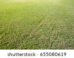 field background | Shutterstock . vector #655080619
