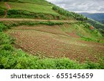 beautiful landscape in... | Shutterstock . vector #655145659