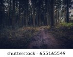 idless woods dark and...   Shutterstock . vector #655165549