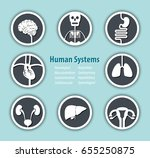human systems icon .... | Shutterstock .eps vector #655250875