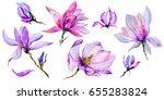 wildflower magnolia flower in a ... | Shutterstock . vector #655283824