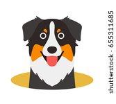 australian shepherd dog on the... | Shutterstock .eps vector #655311685