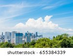 singapore city with rich forest ... | Shutterstock . vector #655384339