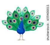cartoon smiling peacock | Shutterstock .eps vector #655400011