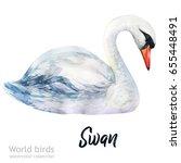watercolor bird of isolated... | Shutterstock . vector #655448491