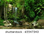 Rain Forest Waterfall In...