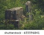Small photo of Old Jewish tombstones overgrown with grass. Village of Vidzy, Belarus