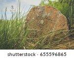 Old Jewish Tombstones Overgrow...