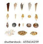 seashells on white background | Shutterstock . vector #655614259