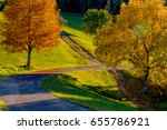 Warm Autumn Colors On The...