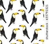 toucan pattern  vector ...   Shutterstock .eps vector #655792321