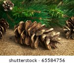 Some Fir Cones At Sackcloth...