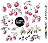 hand drawn ink sketch of garden ... | Shutterstock .eps vector #655920034