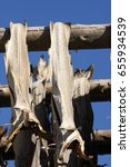 Small photo of Air-dried cod stockfish hanging on the wooden rack and blue sky background