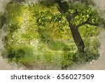 watercolour painting of... | Shutterstock . vector #656027509
