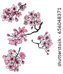 hand drawn cherry branches... | Shutterstock .eps vector #656048371
