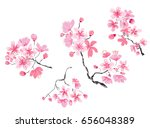 hand drawn cherry branches... | Shutterstock .eps vector #656048389