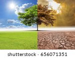 Small photo of A global warming concept image showing the effect of arid land with tree changing Concept of climate change.