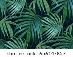 vector palm frond. tropical... | Shutterstock .eps vector #656147857