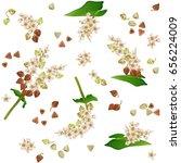seamless pattern with buckwheat ... | Shutterstock .eps vector #656224009