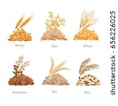 six cereals batches with their... | Shutterstock .eps vector #656226025