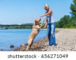 mature woman plays with a... | Shutterstock . vector #656271049