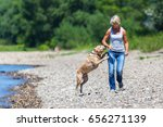 mature woman jogs with a... | Shutterstock . vector #656271139