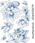 vintage botanical illustration... | Shutterstock .eps vector #656433079