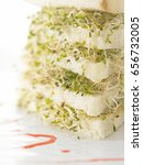 Small photo of layers of alfalfa sandwich